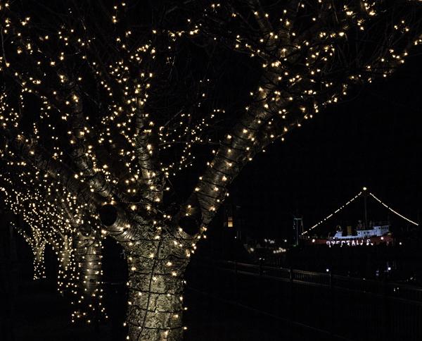 Christmas Lights Lewes 12.20.2014_9735