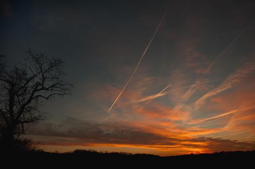 Field Sunset 1.20.2014_1391