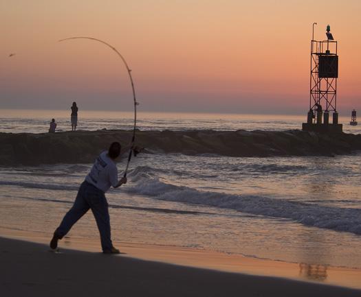 IR Inlet Sunrise. Bethany. Rugosa Rose 5.31.2010_053110_2196.1