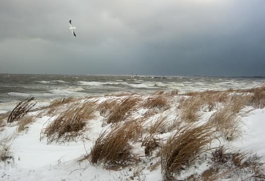 Snow Storm 1.3.2014_0497
