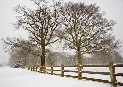 Snowstorm Lewes Afternoon 3.3.2014_4038