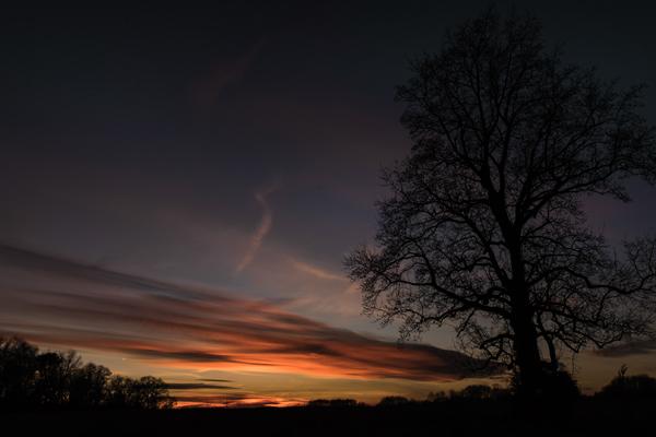 Sunset Smith Field 1.1.2015_0347.2