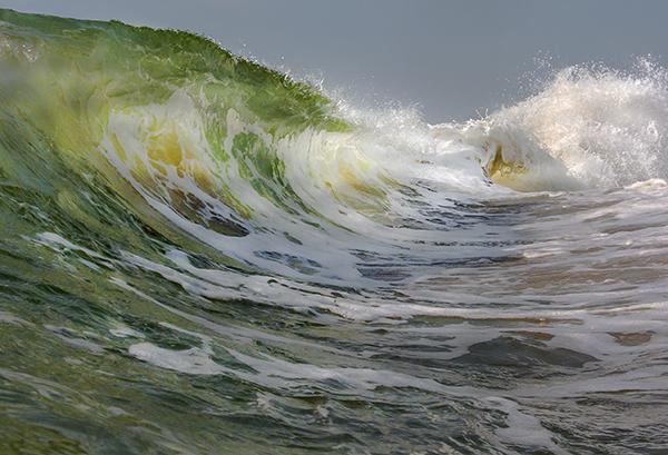WavesFenwick 7.3.2015_5780