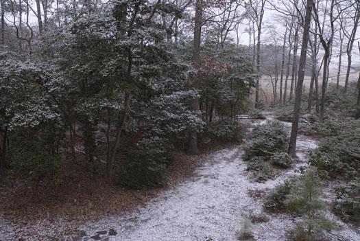 snow-in-yard-1-2-2009_010209_1554
