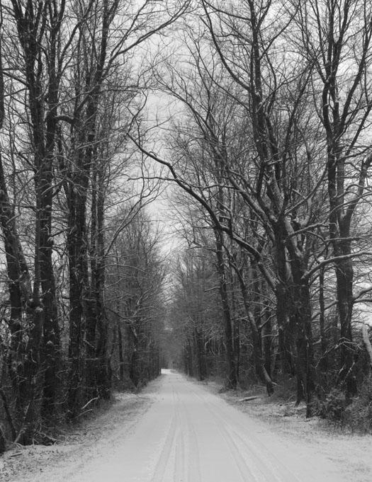 snowy-road-2-4-20091