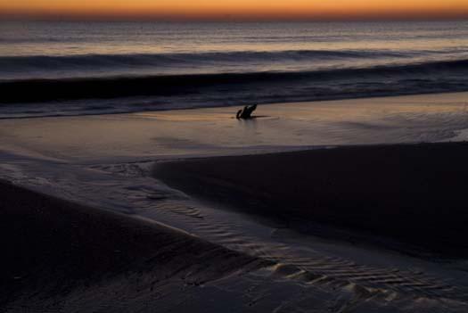 sunrise-1-4-2008-cape-h-silver-lk-reh_4610copy1.jpg