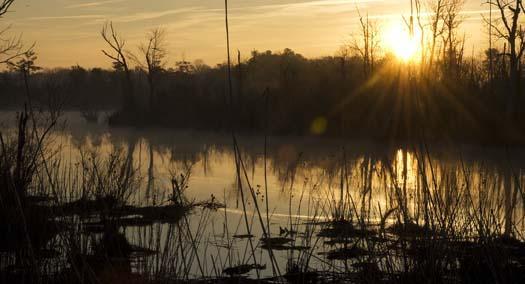 sunrise-3-13-2008_01031.jpg